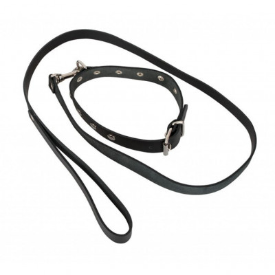 Leather Collar and Leash set